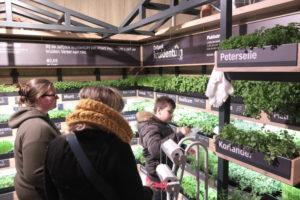 Het supermarktspel spelen met nieuwe regels